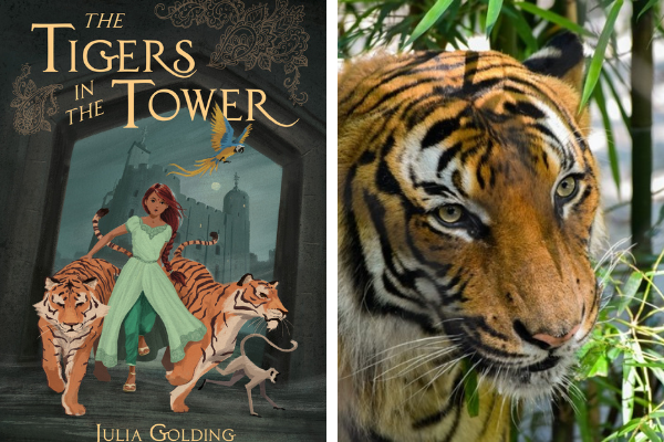 The Tigers in the Tower book and picture of Tiger